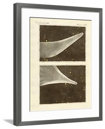 The Great Comet of the Year 1811--Framed Giclee Print
