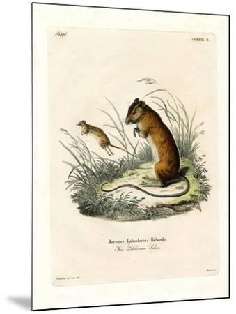 Labrador Jumping Mouse--Mounted Giclee Print