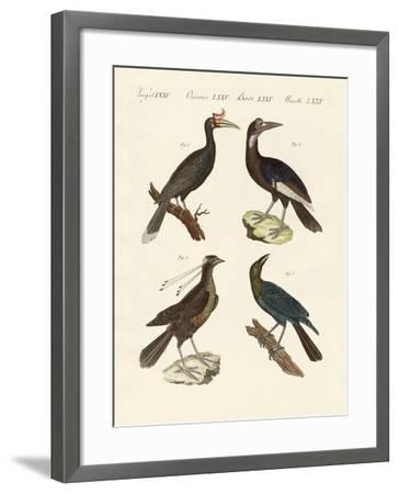 Strange Foreign Birds--Framed Giclee Print
