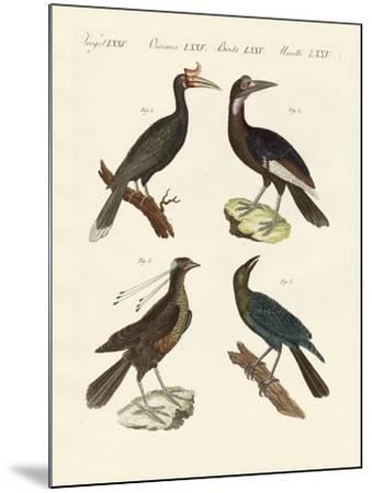 Strange Foreign Birds--Mounted Giclee Print
