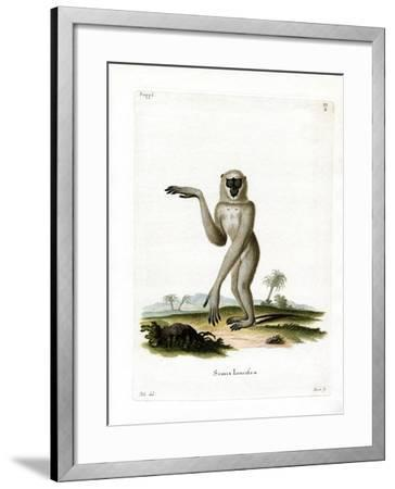 Javan Silvery Gibbon--Framed Giclee Print
