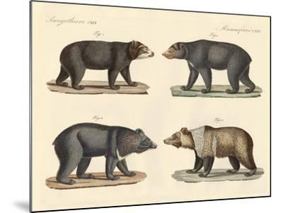 Several Bears Found--Mounted Giclee Print