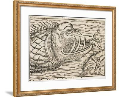 Jonah and the Whale--Framed Giclee Print