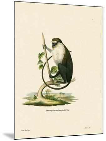 Campbell's Mona Monkey--Mounted Giclee Print
