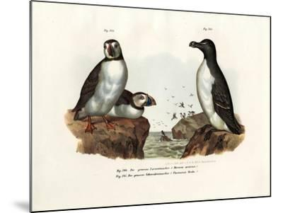 Artic Puffin, 1864--Mounted Giclee Print