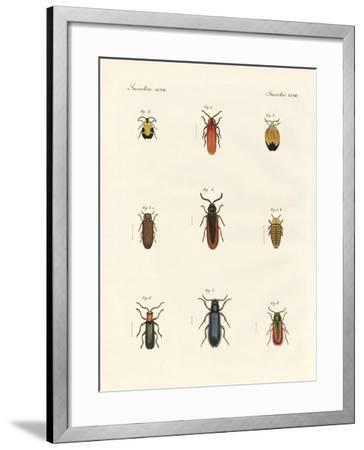 Strange Beetles--Framed Giclee Print