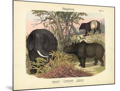 Mammals, C.1860--Mounted Giclee Print