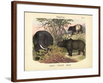 Mammals, C.1860--Framed Giclee Print
