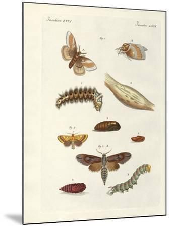Harmful Butterflies--Mounted Giclee Print