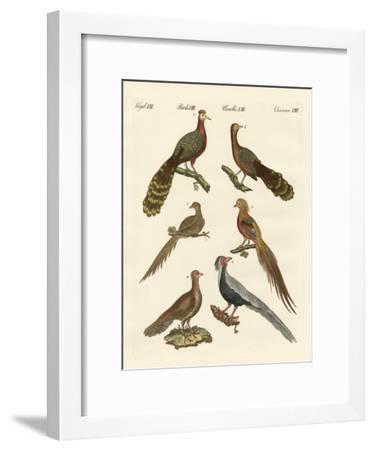 Chinese Birds--Framed Giclee Print