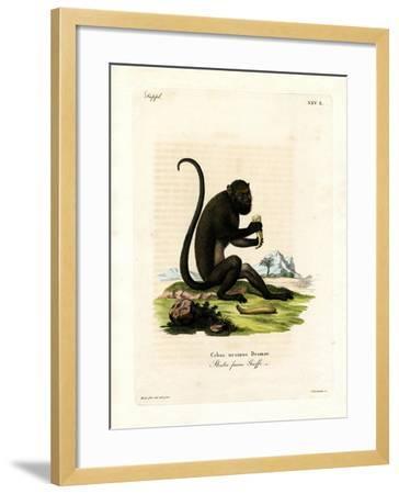 Brown Howler--Framed Giclee Print