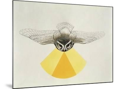 Close-Up of an Owl with its Field of Vision--Mounted Giclee Print
