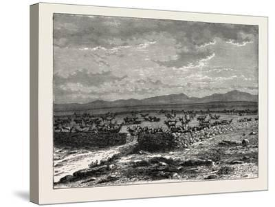 A South African Cattle Kraal. South Africa--Stretched Canvas Print