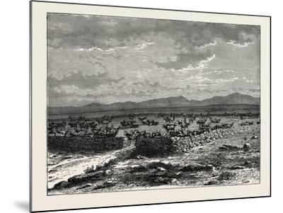 A South African Cattle Kraal. South Africa--Mounted Giclee Print