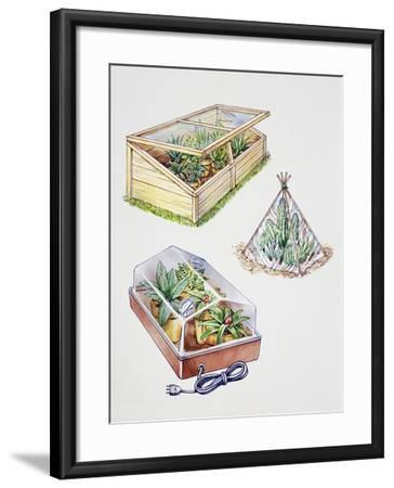 Greenhouse, Plastic Covering for Plants and Plant Propagation Box--Framed Giclee Print