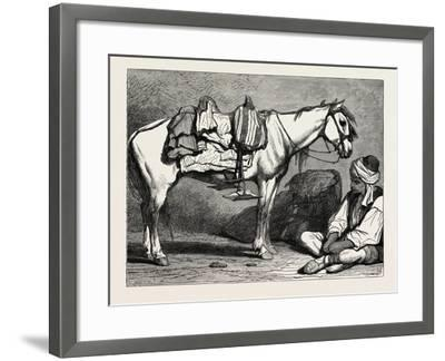 A Bosnian Peasant and His Horse, Bosnia--Framed Giclee Print