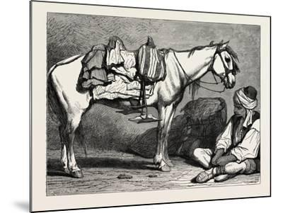 A Bosnian Peasant and His Horse, Bosnia--Mounted Giclee Print