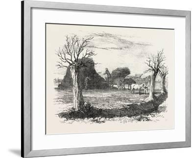 Whittlesea Mere, Carting Peat from the Stack, UK, 1851--Framed Giclee Print