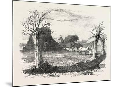 Whittlesea Mere, Carting Peat from the Stack, UK, 1851--Mounted Giclee Print