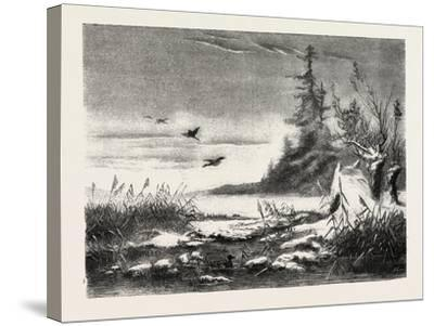 Ambush for Duck Shooting, 1882--Stretched Canvas Print