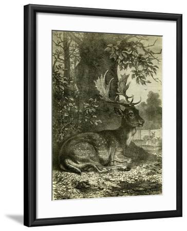 Hunting Austria 1891--Framed Giclee Print