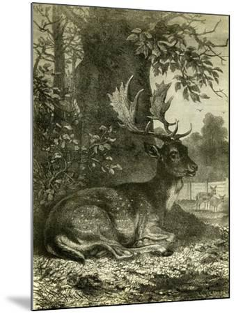 Hunting Austria 1891--Mounted Giclee Print