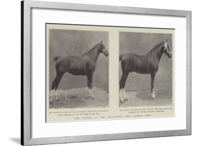 Two Winners at the Agricultural Hall Hackney Show--Framed Giclee Print