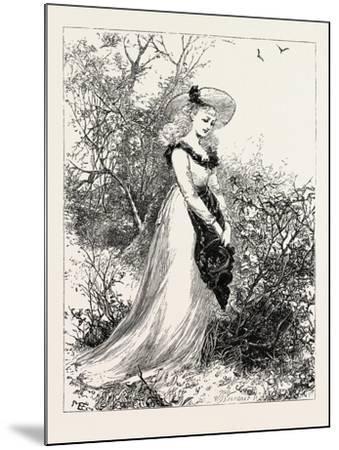 Wild Flowers--Mounted Giclee Print