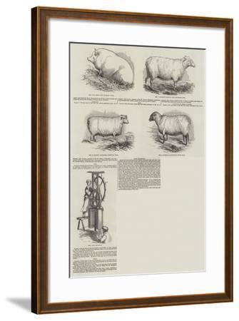 Southampton Meeting of the Royal Agricultural Society of England--Framed Giclee Print
