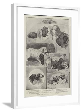 Sketches at the Kennel Club Show, Crystal Palace--Framed Giclee Print
