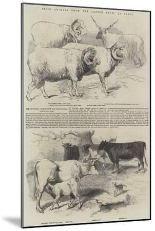 Prize Animals from the Cattle Show, at Paris--Mounted Giclee Print