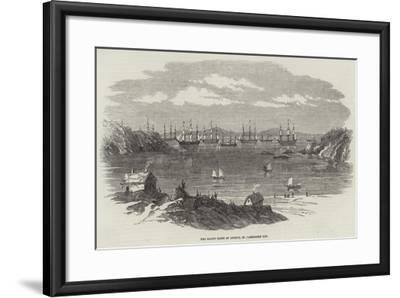 The Baltic Fleet at Anchor, in Elgsnabben Bay--Framed Giclee Print