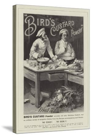 Advertisement, Bird's Custard Powder--Stretched Canvas Print