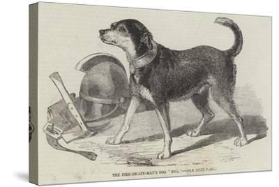 The Fire-Escape-Men's Dog Bill--Stretched Canvas Print