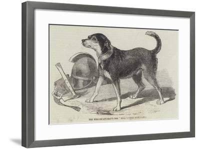 The Fire-Escape-Men's Dog Bill--Framed Giclee Print