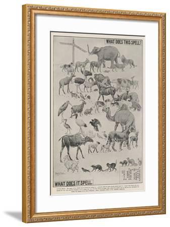 Advertisement, Ellimans Embrocation--Framed Giclee Print