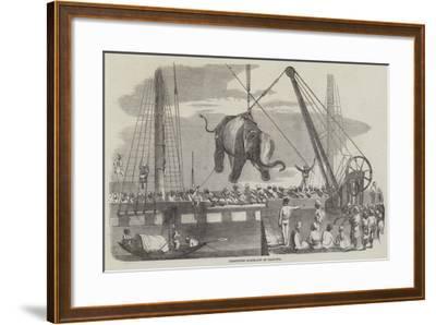 Unshipping Elephants at Calcutta--Framed Giclee Print