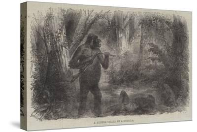 A Hunter Killed by a Gorilla--Stretched Canvas Print