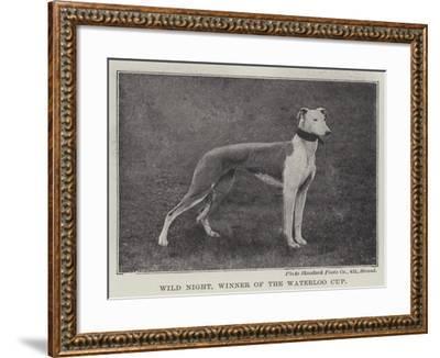 Wild Night, Winner of the Waterloo Cup--Framed Giclee Print