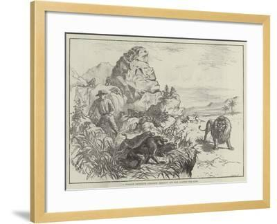 A Strange Defensive Alliance, Baboons and Man Against the Lion--Framed Giclee Print