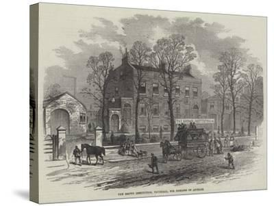 The Brown Institution, Vauxhall, for Diseases of Animals--Stretched Canvas Print