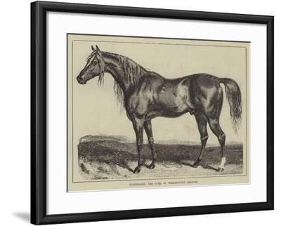 Copenhagen, the Duke of Wellington's Charger--Framed Giclee Print