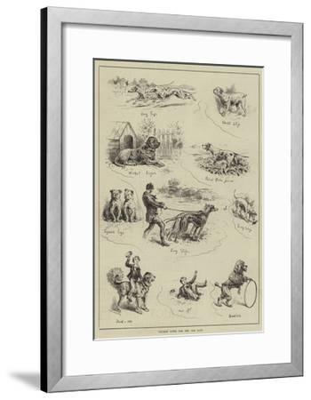 Cricket Notes for the Dog Days--Framed Giclee Print