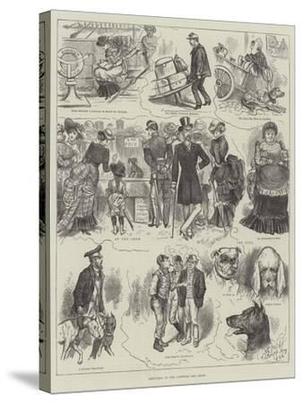 Sketches at the Antwerp Dog Show--Stretched Canvas Print