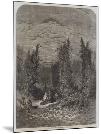 Hop-Garden Near Farnham, Surrey--Mounted Giclee Print