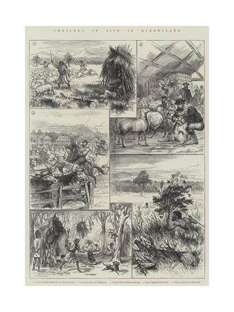 Sketches of Life in Queensland--Framed Giclee Print