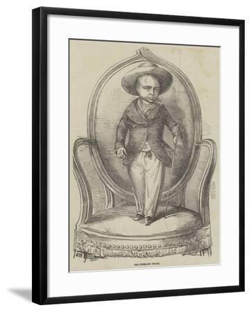 The Friesland Dwarf--Framed Giclee Print