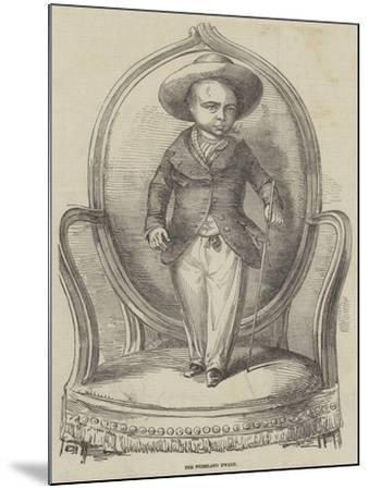 The Friesland Dwarf--Mounted Giclee Print