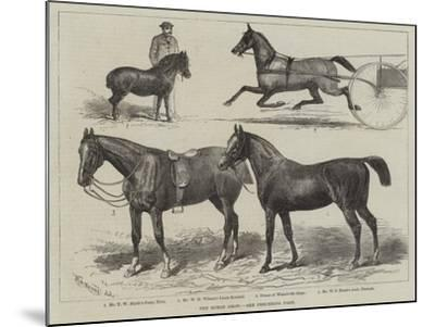 The Horse Show--Mounted Giclee Print