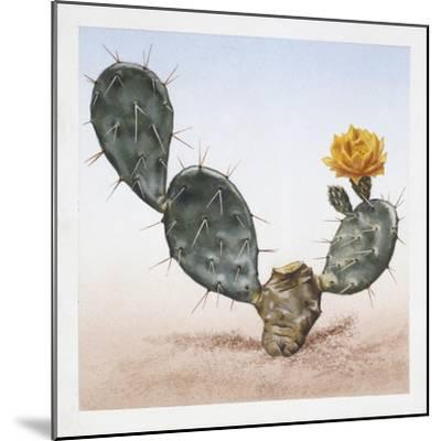 Indian Fig Opuntia (Opuntia Ficus-Indica)--Mounted Giclee Print